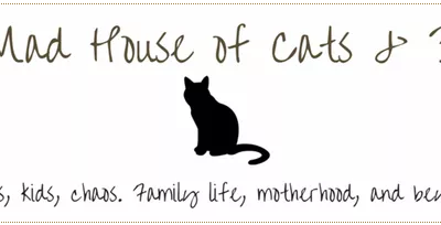 the-mad-house-of-cats-and-dogs-october-2019